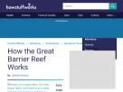 How the Great Barrier Reef works.