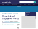 How animal migration works.