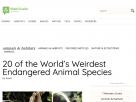 20 of the world's weirdest endangered species.