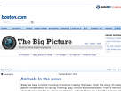 The Big Picture: Animals in the news.