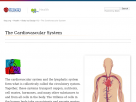 The cardiovascular system at Faqs.org.