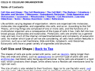 Cellular organization.