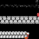 Arachidic acid, a fatty acid.