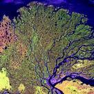Lene river delta, Siberia