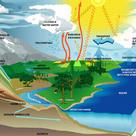 Diagram of the water cycle (IV)